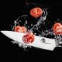 Nôž šéfkuchára Dellinger Samurai Professional Damascus VG-10, 200mm
